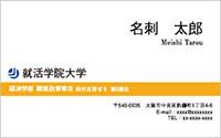 テンプレート名刺 ビジネス系 RY-002 横