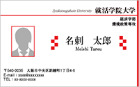 写真入りテンプレート名刺 ビジネス系 RY-S-007 横