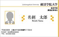 写真入りテンプレート名刺 ビジネス系 RY-S-008 横