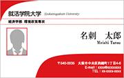 写真入りテンプレート名刺 ビジネス系 RY-S-009 横