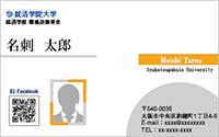 写真入りテンプレート名刺 ビジネス系 RY-S-014 横